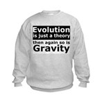 Evolution Is A Theory Like Gravity Kids Sweatshirt