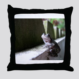.wistful. Throw Pillow