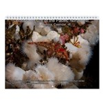 North Pacific Ocean Life 2013 Wall Calendar v6