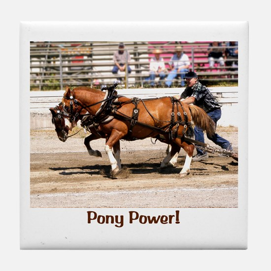 Welsh Pony (Sect. C) Tile Coaster