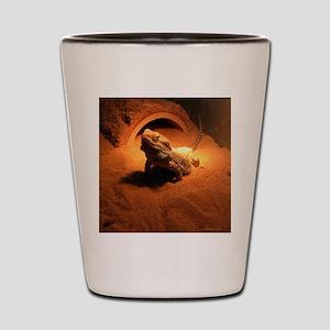 .bearded dragon. Shot Glass