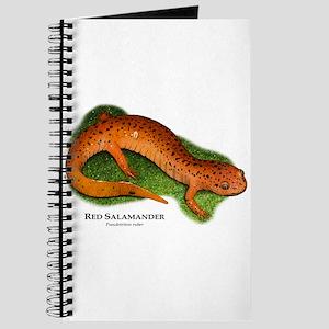 Red Salamander Journal