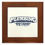 Plumbing / Kings Framed Tile
