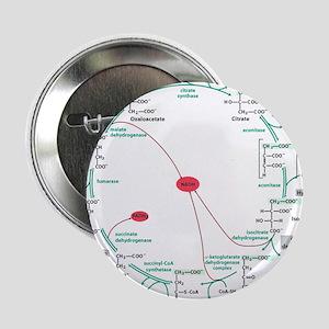"""Kreb's Cycle 2.25"""" Button"""