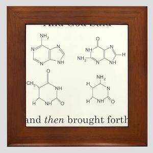 God Created DNA Framed Tile