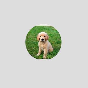 Puppy in the Grass Mini Button