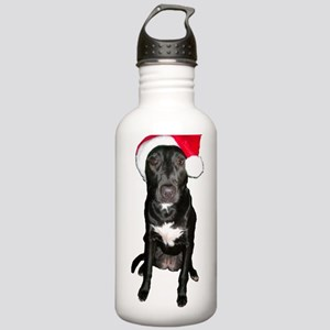 Santa Dog Stainless Water Bottle 1.0L