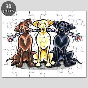 Lab Rope Puzzle
