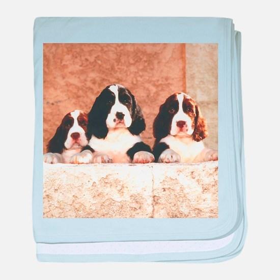 English Springer Pups 2 baby blanket