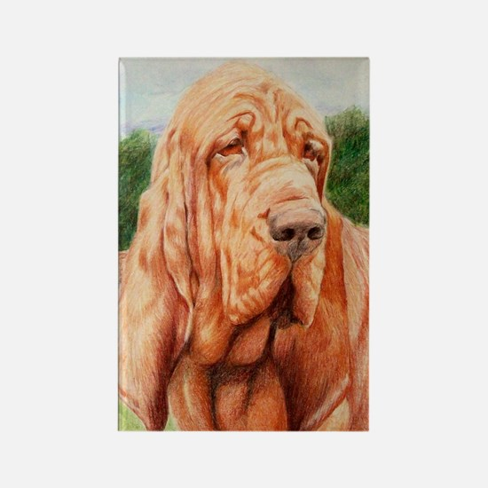 Bloodhound Head Rectangle Magnet