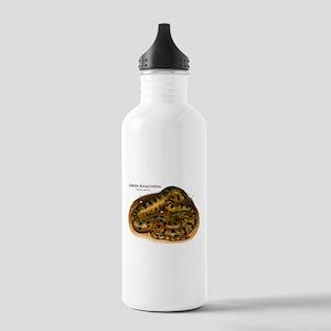 Green Anaconda Stainless Water Bottle 1.0L