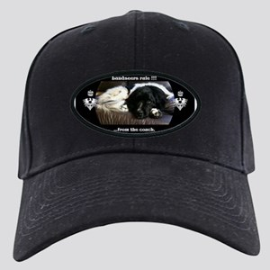 Landseers rule !!! Black Cap
