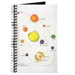 Raw Foods Solar System Journal
