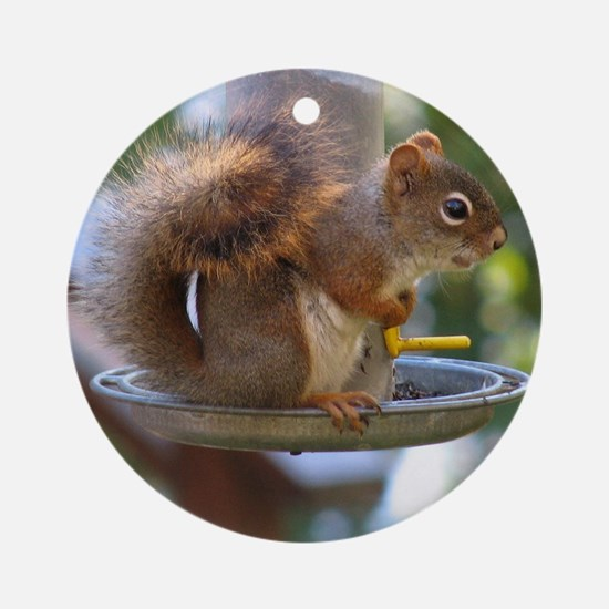 Red Squirrel I Ornament (Round)