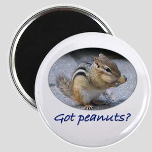Got Peanuts? Magnet