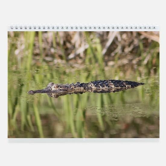Cute Swamp Wall Calendar