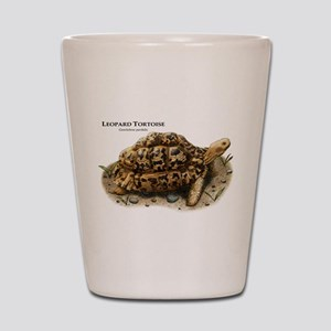 Leopard Tortoise Shot Glass
