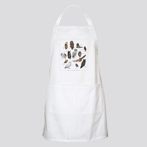 Owls of North America Apron