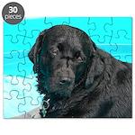 Black Lab image on Puzzle