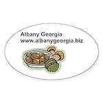 Albanygeorgia.biz Sticker