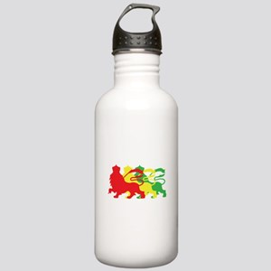 COLOR A LION Stainless Water Bottle 1.0L
