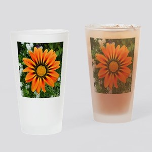 .gazania. Drinking Glass