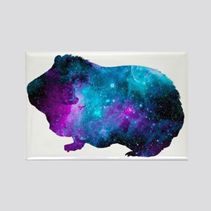 Galactic Guinea Pig Magnets