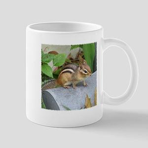 Garden Bandit Mug