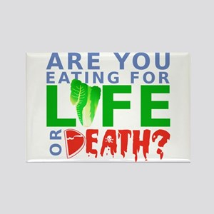 Life or Death Rectangle Magnet