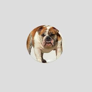 Bulldog Items Mini Button