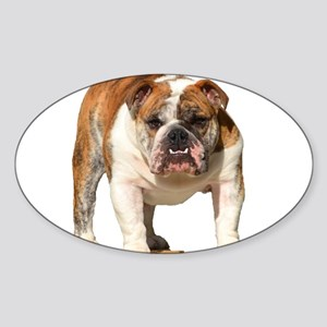 Bulldog Items Sticker (Oval)
