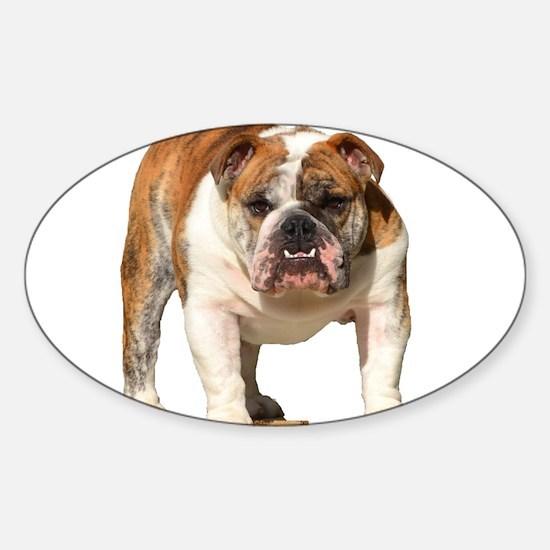 Bulldog Items Sticker (Oval)