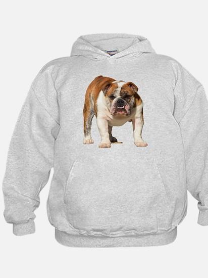 Bulldog Items Hoodie