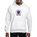 HACHEY Family Crest Hooded Sweatshirt