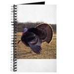 Beautiful Turkey Journal