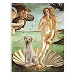 Venus - Yellow Lab #7 Small Poster