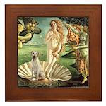 Venus - Yellow Lab #7 Framed Tile