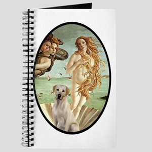 Venus - Yellow Lab #7 Journal