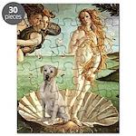 Venus - Yellow Lab #7 Puzzle