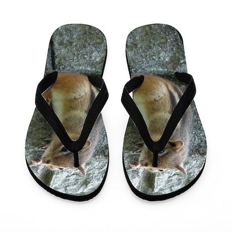 Eastern Chipmunk Flip Flops