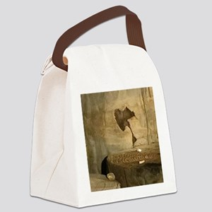 Ancient Indian Rock Canvas Lunch Bag