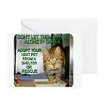 Double saying Greeting Cards (Pk of 20)