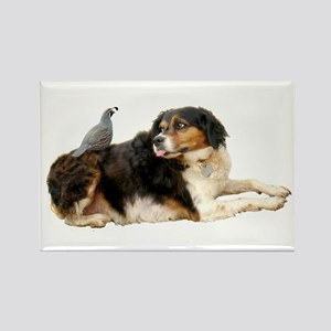 Quail Dog Rectangle Magnet