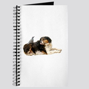 Quail Dog Journal