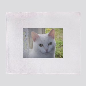 Sugar Kitty Collection Throw Blanket