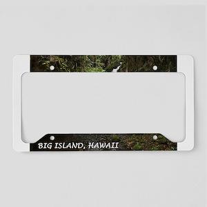 Hawaii Big Island Waterfall 2 License Plate Holder