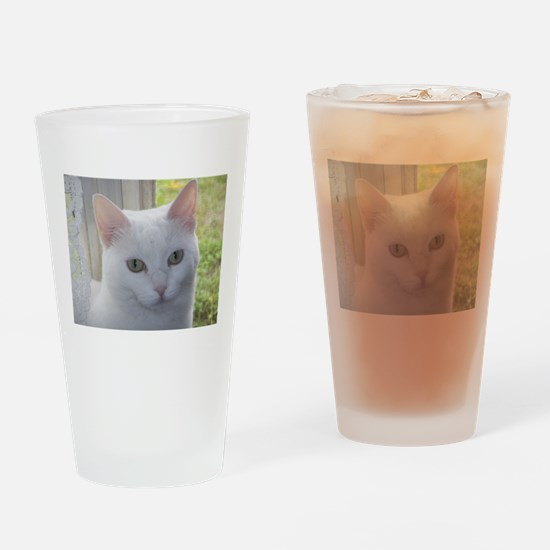 Sugar Kitty Collection Drinking Glass