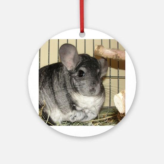Chinchilla - Benny - Ornament (Round)