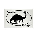 Never Forget Dinosaurs Rectangle Magnet (10 pack)