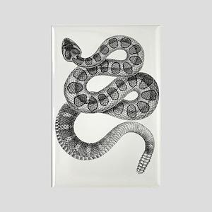 Rattlesnake Rectangle Magnet